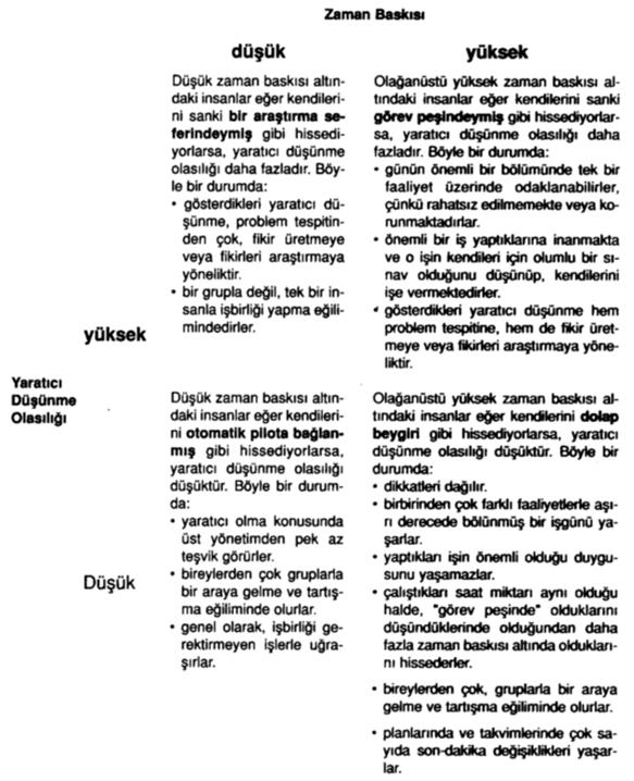 inovasyon_sunum_3